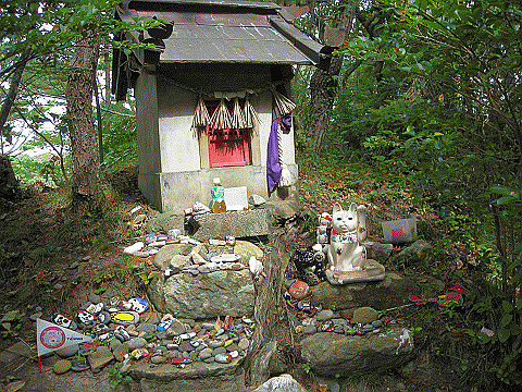 Cat shrine ~ cats are respected here..